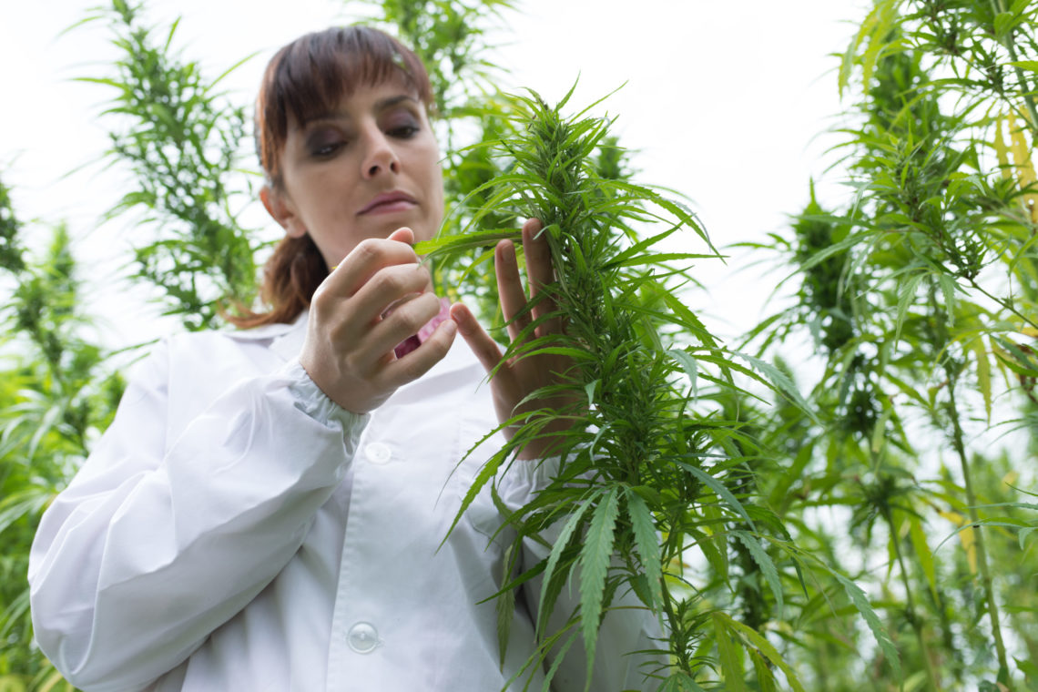 CBD: Are You Getting What You Paid For? A publication in the highly regarded Journal JAMA (Journal of the American Medical Association) in 2017 evaluated many CBD products for the reliability of CBD concentrations relative to the labeling of the products.   Eighty-four products were purchased from 31 online companies, then sent to an outside […]